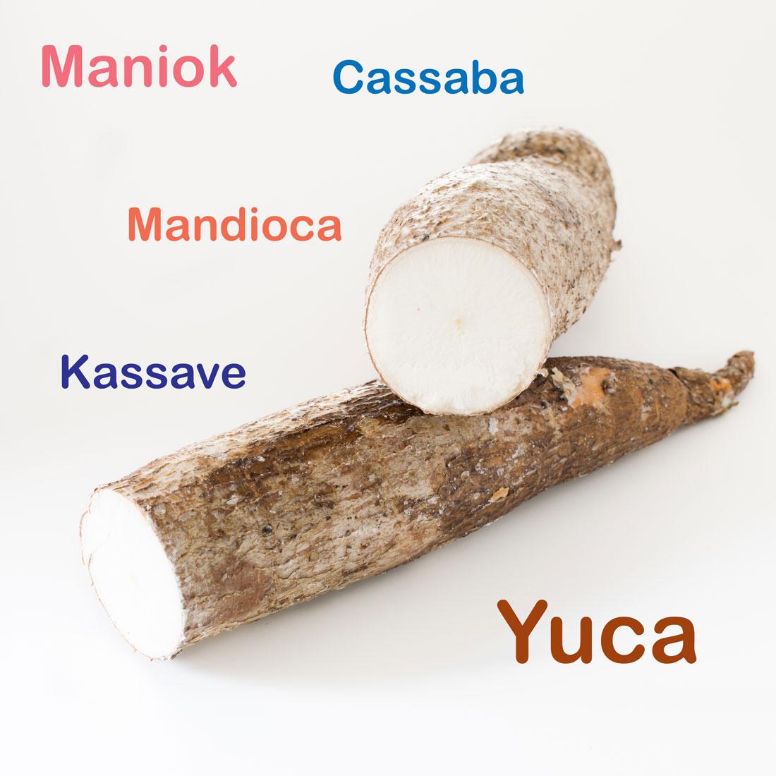 Mandioca-Cassaba-Kassave