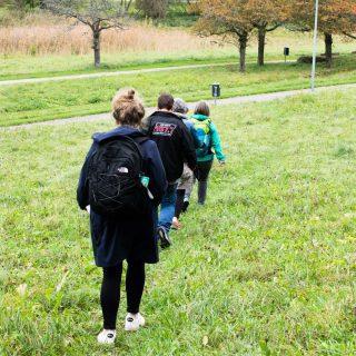 Wildkräuterwanderung in Sindelfingen